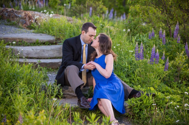 Lupins in bloom at engagement pictures in maine