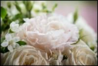 Nonantum Resort Wedding Photography 0122