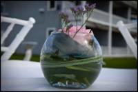 Nonantum Resort Wedding Photography 0160