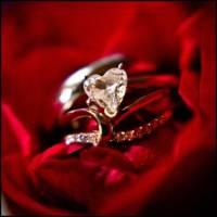 Nonantum Resort Wedding Photography 0168