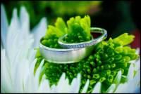 Nonantum Resort Wedding Photography 0222
