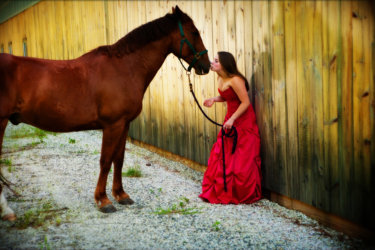 senior photogaphed wearing red prom dress at stable with her horse for senior portrait shoot
