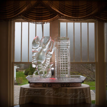 Wentworth by the Sea wedding phogoraphy ice sculpture