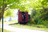 The Narrow Gauge Railroad approaches the Ceremony at Fish Point