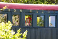Bridesmaid looking out the train window at ceremony.