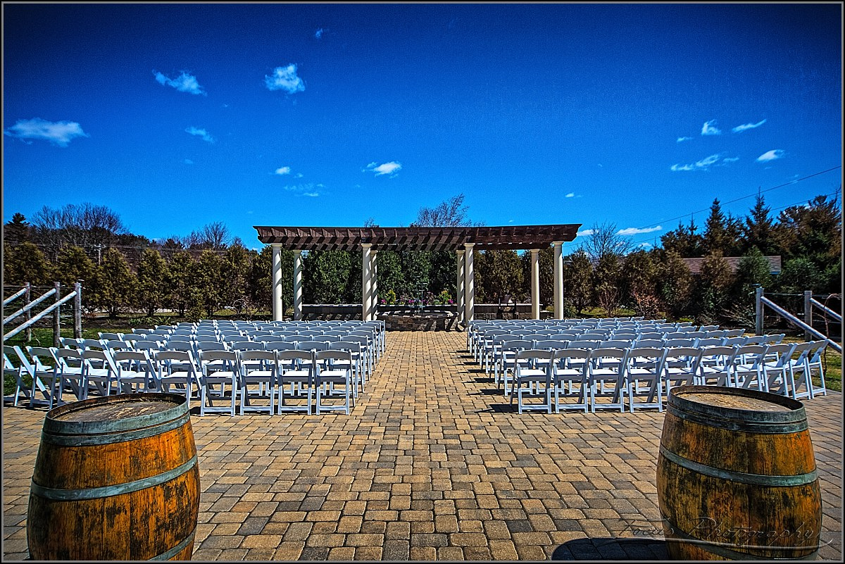 Birch Wood Vineyard Ceremony Site