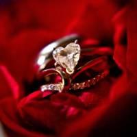 108-wedding_rings