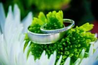 113-rings-on-flowers