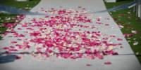 734 wedding details