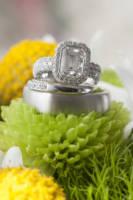 761 wedding rings