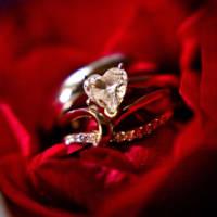 770 wedding rings