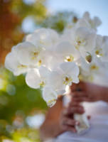 776 floral bouquets