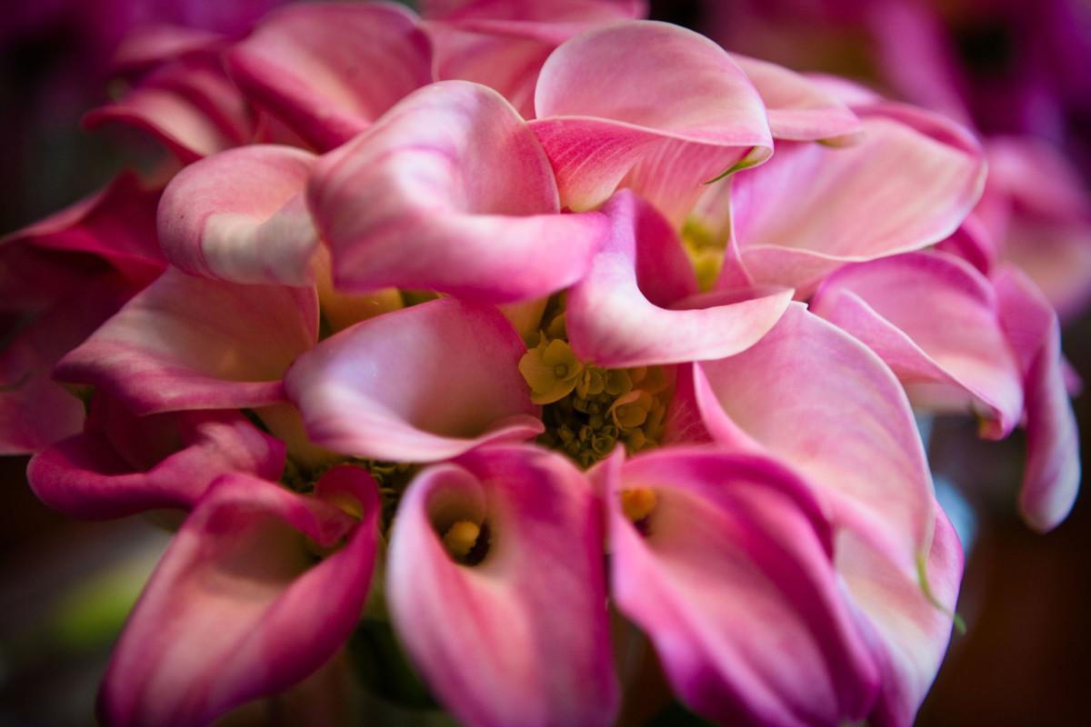 787 floral bouquets
