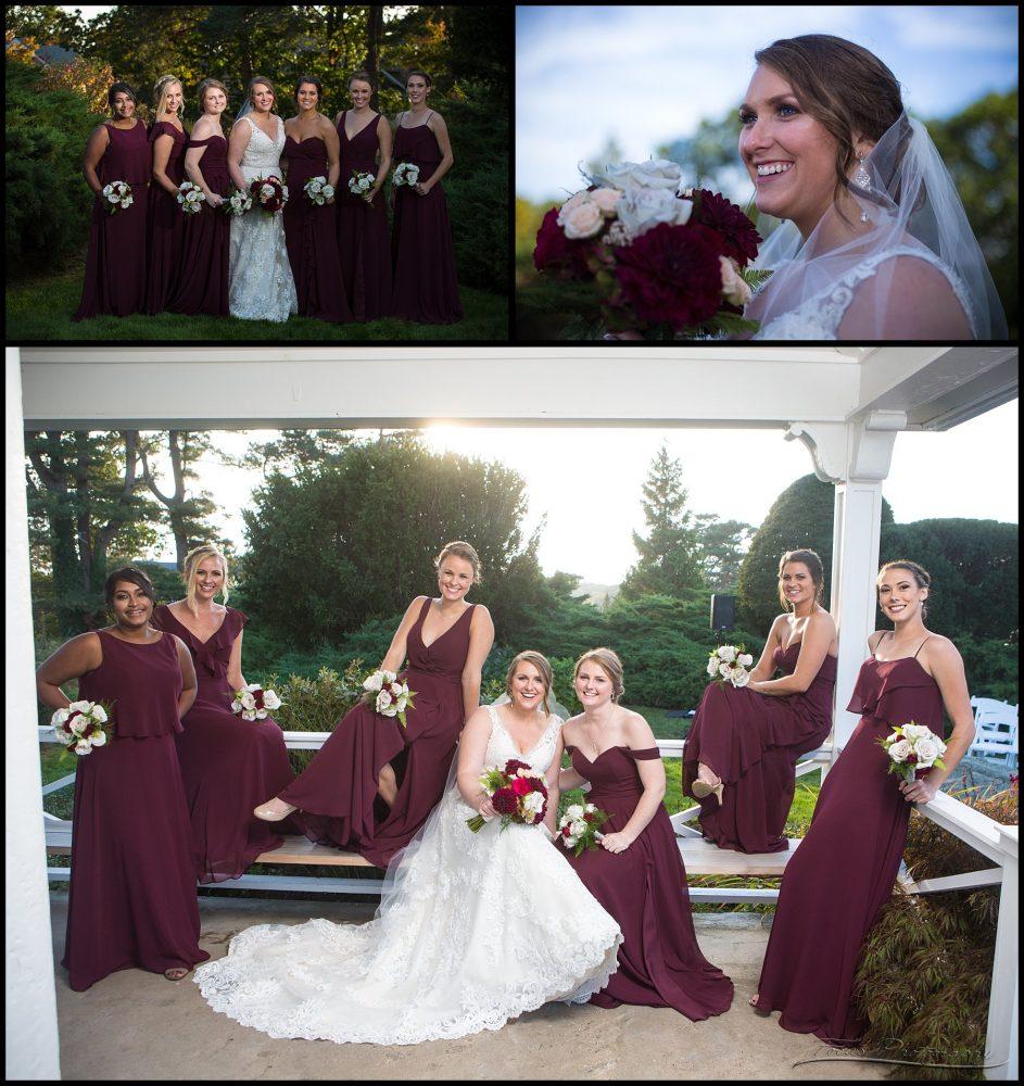 Wentworrth wedding bridal party